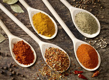 Various kinds of spices Stock Photography