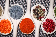 Various kinds of spicy ingredients for a healthy life Royalty Free Stock Photos
