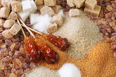 Various kinds of sugar Stock Photo