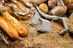 Various kinds of whole wheat bread Royalty Free Stock Photo