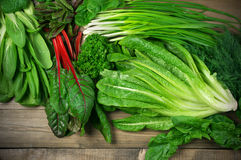 Various leafy vegetables Stock Photography