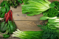Various leafy vegetables Stock Images