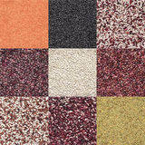 Various legume set. Set of various legume grains texture: white, black, purple and red speckled beans, red and green lentils Stock Photo