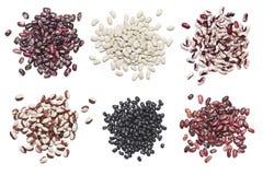 Various legume set Stock Photo