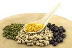 The various legumes Stock Photo
