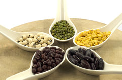 The various legumes with white spoon Stock Photo
