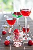 Various little glasses with cherry liquor Stock Photos