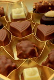 Various luxurious chocolates. Luxurious chocolates in a golden box Stock Images