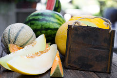 Various melons with empty sign Royalty Free Stock Image