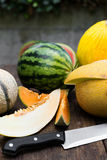 Various melons on a table Royalty Free Stock Photography