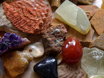 Various minerals and stones. Detail of the collection of different kinds of minerals, polished gemstones, stones and shells Royalty Free Stock Image