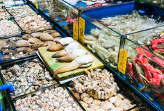 Various mollusks in fish market in Guangzhou city Royalty Free Stock Images