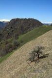 Various mountains Royalty Free Stock Photos