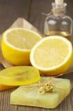 Various natural soaps Stock Image