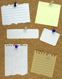 Various note papers on cork board Royalty Free Stock Photos
