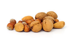 Various nuts. Including hazelnuts, walnuts and almond Stock Images