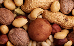 Various Nuts Background Royalty Free Stock Photos