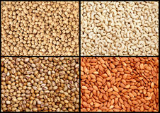 Various nuts (cashew, almond, pistachio, peanuts) Stock Photography