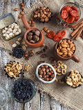 Various nuts and dried fruits - cashew, walnut, pistachios, hazelnuts, dried apricots, raisins royalty free stock photos