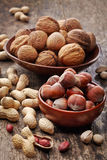 Various nuts Stock Image