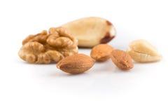 Various nuts Royalty Free Stock Photo