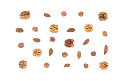 Various nuts on white background royalty free stock images