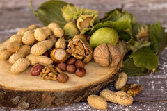 Various nuts stock images