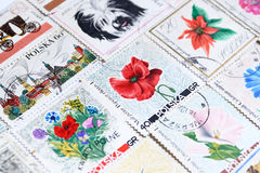 Various old vintage retro Polish post stamps Royalty Free Stock Photos