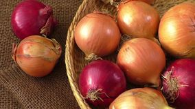 Various onions on a background sacking, burlap stock footage