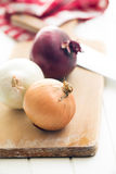 Various onions Stock Image