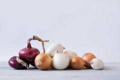 Various onions. Royalty Free Stock Images