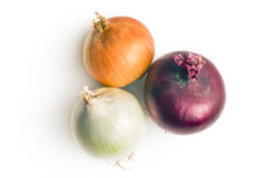Various onions Stock Photography