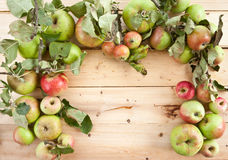 Various organic apples Stock Images