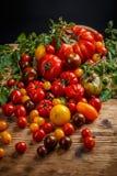 Various organic tomatoes Royalty Free Stock Photos