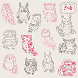 Various Owl Doodle Collection Stock Photography