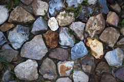 Various pebble stones for background Stock Photo