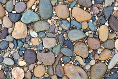Various pebble stones texture Stock Photography