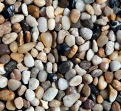 Various pebble stones texture Stock Images