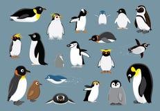 Various Penguins Cartoon Vector Illustration stock illustration
