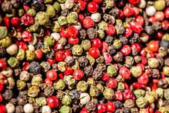 Various pepper mixture. Close-up photography. Various pepper mixture Royalty Free Stock Image