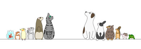 Various pets in a row,looking away. Various cute pets in a row,looking away Royalty Free Stock Image
