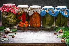Various pickles and ingredients Royalty Free Stock Image