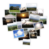 Various of pictures Royalty Free Stock Photo