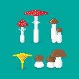 Various pixel Mushroom Royalty Free Stock Images