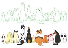 Various posing dogs in a row Stock Photography
