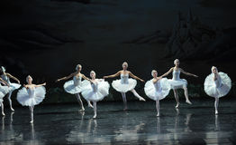 Various postures of Swan-ballet Swan Lake Stock Photo
