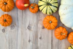 Various pumpkins and squashes on wooden background Stock Photo