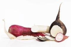 Various radish Stock Photo