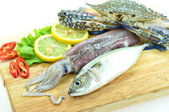 Various raw seafood. On chopping board Stock Photos