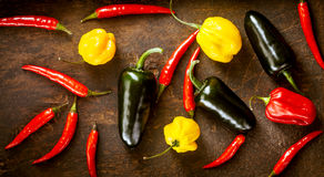 Various Red chili peppers, habanero,sweet peppers and jalapeno. Assorted fresh organic red chili peppers, habanero,colorful red and yellow sweet peppers and Royalty Free Stock Images